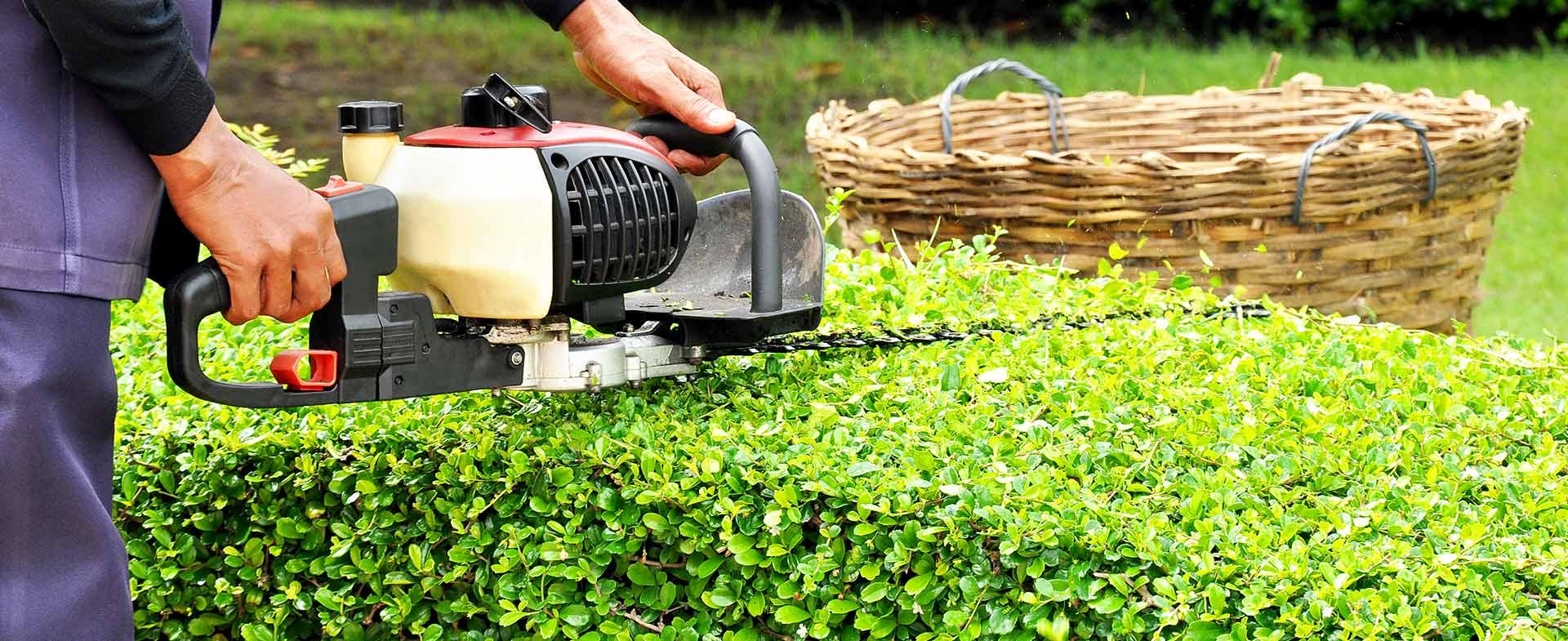 Gardeners Hampton